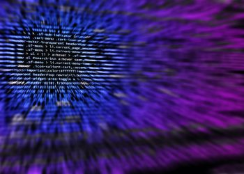 Guide for online fraud